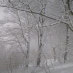 初春の焼岳バックカントリー